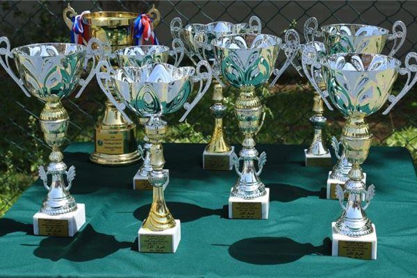 Sports achievements