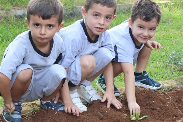 Organic Planting